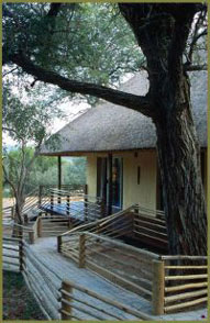 Walkway,Toro Yaka Bush Lodge,Balule Nature Reserve,Kruger National Park,Accommodation,Bookings