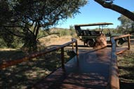 Walkway to Game drive Landy